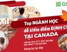 Du học ngành nào dễ kiếm điểm định cư tại Canada?