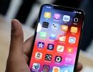 Apple ra mắt iPhone mới dành riêng cho ... hacker