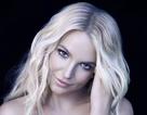 Khoe một đôi giày, Britney Spears bị cộng đồng mạng chỉ trích