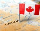 Cập nhật 10 lý do chính khiến visa du học Canada bị từ chối & bí quyết khắc phục