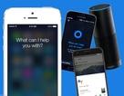 Amazon Alexa, Google Assistant và Apple Siri - Trợ lý ảo nào thông minh nhất?