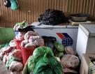 Phạt chủ cơ sở trữ 8 tấn thịt heo bốc mùi hôi thối hơn 100 triệu đồng