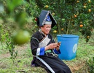 Người Lào Cai đã trở thành công dân điện tử như thế nào?