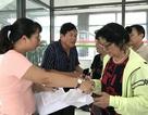 Hà Nội đã cấp hơn 70 nghìn thẻ xe buýt miễn phí
