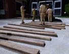 Bắt giữ xe ô tô vận chuyển 30 hộp gỗ lậu