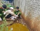 Xả thải độc hại ra môi trường, doanh nghiệp cán thép bị phạt 50 triệu đồng