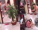 Sở Văn hóa Hà Nội đề nghị xử lý hành vi bạo lực gia đình tại Long Biên