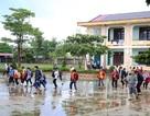 Quảng Bình: Chủ động cho học sinh nghỉ học để đảm bảo an toàn trong bão số 4