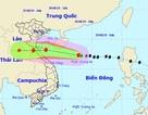 Bão số 4 áp sát Quần đảo Hoàng Sa, giữ nguyên hướng vào Bắc miền Trung