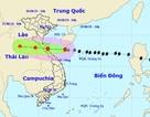 Sáng mai bão số 4 vào đất liền Nghệ An - Quảng Bình