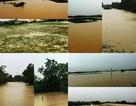 Nước sông lên báo động 2, hàng nghìn hộ dân bị cô lập