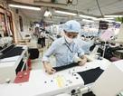 Công nghệ không dễ giành mất việc lao động dệt may