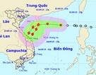 Xuất hiện áp thấp trên Biển Đông có khả năng mạnh thành bão số 5