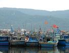 Đà Nẵng, Quảng Trị nghiêm cấm tàu thuyền ra khơi