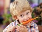 Món ăn đơn giản từ cà rốtmang lại cho con lợi ích không ngờ