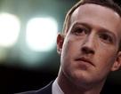 """""""CEO Facebook Mark Zuckerberg cần phải bị bỏ tù"""""""