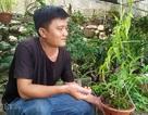 """8X Lạng Sơn mêphong lan rừng: Kiếm trăm triệu từ 1 câu """"nhỡ mồm"""""""