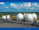PV GAS đứng thứ 5 trong Top 20 doanh nghiệp vốn hóa lớn nhất thị trường Việt Nam