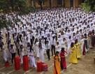 """Thầy cô và gần 1.000 học sinh nhảy cha cha cha gây """"sốt"""" mạng xã hội"""