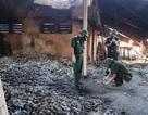 Binh chủng Hóa học có thể tẩy sạch chất độc quanh khu vực cháy Công ty Rạng Đông