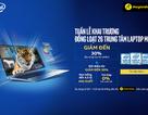 Thế Giới Di Động khai trương 26 trung tâm laptop trên toàn quốc – Ưu đãi đến 30%