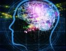 """Cảnh báo nguy cơ cấy ghép não có thể """"rò rỉ"""" thông tin nhạy cảm"""