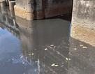 Nước sông Vinh bất ngờ đổi màu đen và bốc mùi hôi thối