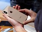 Apple chính thức khai tử iPhone XS/XS Max và iPhone 7/7 Plus