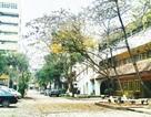 Trường Đại học Kiến trúc Hà Nội tiến tới kỷ niệm 50 năm thành lập