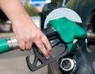TPHCM tăng cường kiểm tra hoạt động kinh doanh xăng dầu, hoá chất