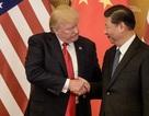 Trung Quốc mua thêm đậu nành Mỹ trước ngày đàm phán thương mại