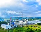 Công ty Giấy An Hoà không ngừng hoàn thiện để trở thành DN phát triển bền vững tại Việt Nam