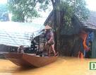 Hà Tĩnh đề nghị Trung ương hỗ trợ 300 tỷ đồng khắc phục hậu quả mưa lũ