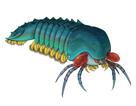 Loài sinh vật ác mộng dưới đáy biển