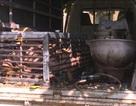 Triệt phá đường dây chuyên mua bán hổ từ Nghệ An ra Quảng Ninh để nấu cao