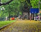 Ngắm phố đi bộ Hồ Gươm ngày chớm thu