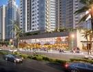 Đa dạng hóa trong đầu tư bất động sản, khối đế thương mại Starlake sẽ là lựa chọn ưu tiên