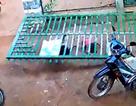 Bé trai 3 tuổi bị cổng sắt đè tử vong