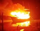 Vụ tàu cá bốc cháy: 2 người chết, 6 người mất tích và bị thương