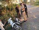 Hải Dương: Cưa cây đổ trúng 2 nữ sinh đi đường, 1 người tử vong