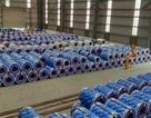 Tôn Pomina đã có lô hàng xuất khẩu đầu tiên ra thị trường quốc tế