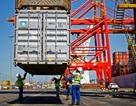 Triển vọng xấu hơn: Tăng trưởng kinh tế toàn cầu 2019 giảm xuống mức 2,9%