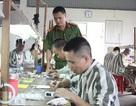 7.000 phạm nhân lao động ở ngoài trại, chỉ 1 người bỏ trốn