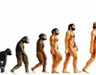 Dân số thế giới thay đổi thế nào từ khi con người mới xuất hiện cho đến nay!