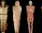 """Phát hiện xác ướp Ai Cập bí ẩn là """"bác sĩ nhãn khoa"""" cho Pharaoh"""