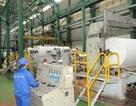 """Công ty giấy Tissue sông đuống """"60 năm hình thành và phát triển"""""""