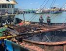 Cháy tàu cá 13 tỷ, nghi do bất cẩn khi hàn xì