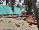 Xử lý khẩn cấp tình trạng sạt lở bờ biển Đà Nẵng