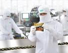 """Một năm """"khởi sắc"""" của thị trường mì gói Việt"""