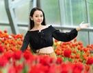 Thưởng lãm mùa xuân châu Âu tại Vinpearl Land Nha Trang